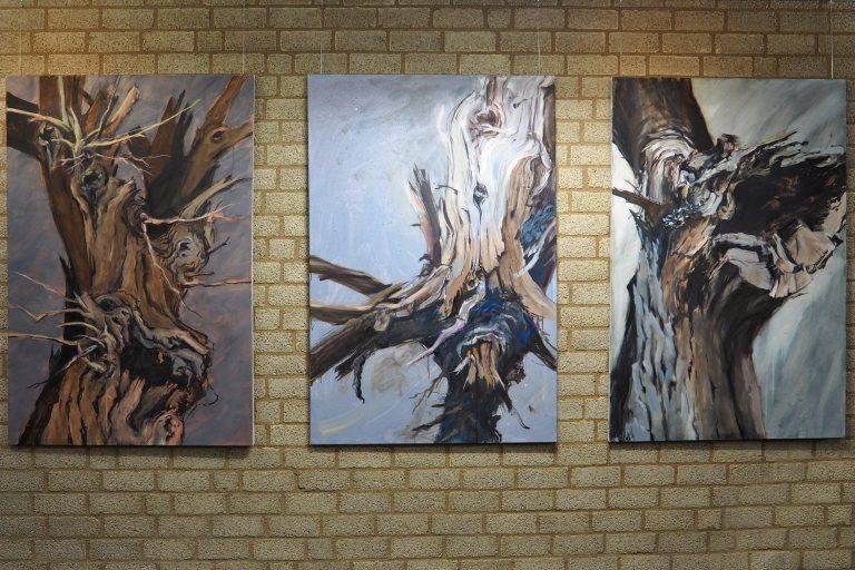 Bäume und Wurzelwerk