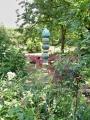 Hingucker im Garten